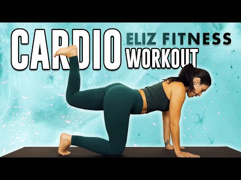 full body workout  fatburning cardio for beginners ♥ 20